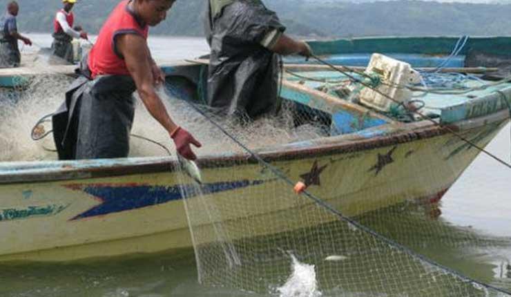 Pescadores, Esmeraldas, Ecuador,